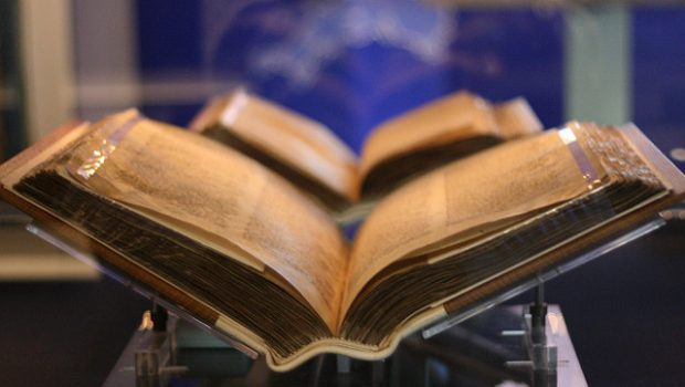 Libros que muerden
