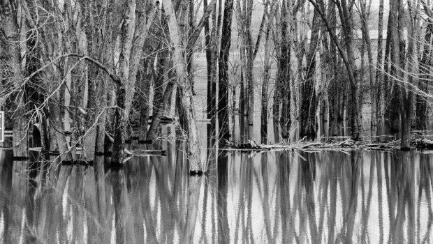 A río revuelto