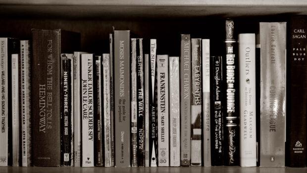 Mis libros del 2020