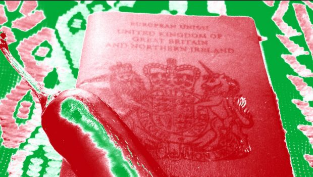 Britishness, or How my Mother Became Mexican