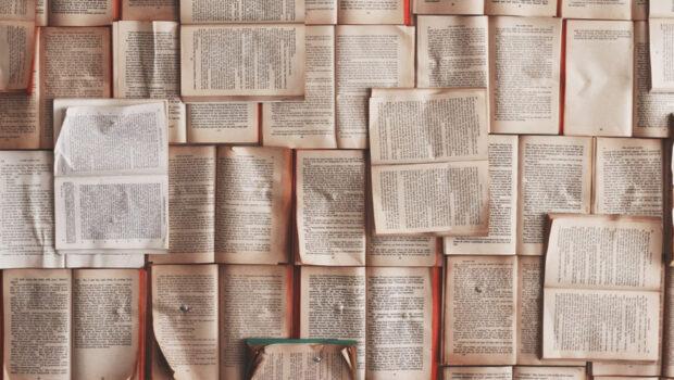 The Iniquitous Agony of Literature