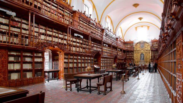 Fascinación por las bibliotecas