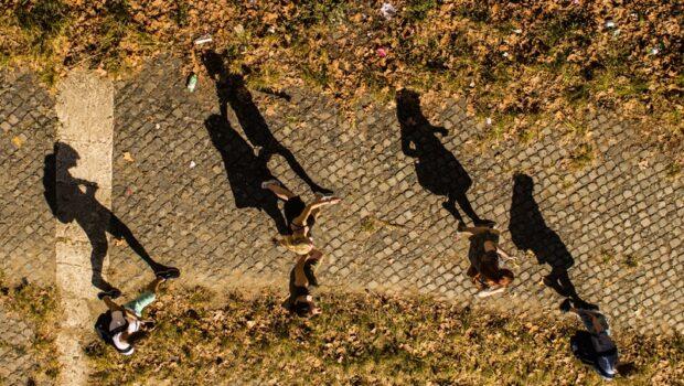 Malva Flores: Sombras en el campus